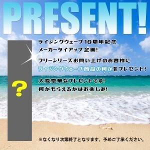 ライジングウェーブ フリー サンセットピンク EDT SP 50ml RISINGWAVE メンズ 香水 あすつく|kousuiclub|02