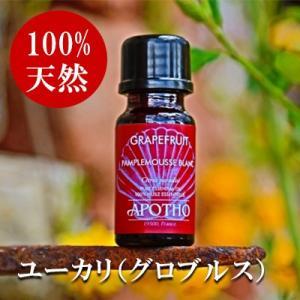 アロマオイル ユーカリ (グロブルス) アポソ APOTHO 10ml エッセンシャルオイル 精油 あすつく|kousuiclub