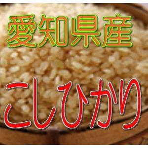 新米 こしひかり 2kg(玄米) 令和2年産 愛知県産  |kowa-beikoku