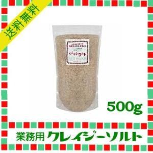 日本緑茶センター 業務用クレイジーソルト 500g|kowakeya