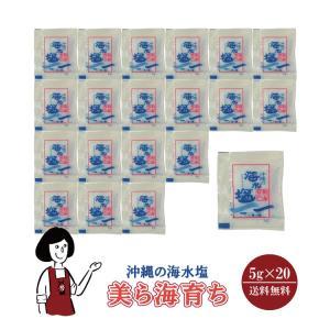 沖縄の海水塩 美ら海育ち 5g×20袋
