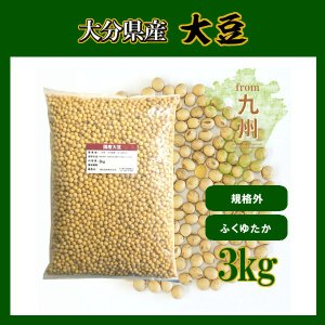 国産大豆 3kg 大分県産 ふくゆたか 規格外