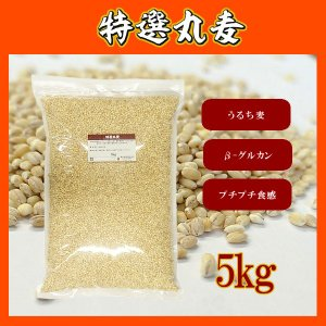 ■名称:丸麦   ■内容量:5kg ■原材料:大麦     ■原産地:日本(主に九州・中国地方) ■...