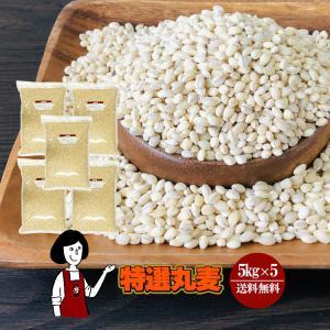 特選丸麦 5kg×5〔チャック付〕/国産 kowakeya