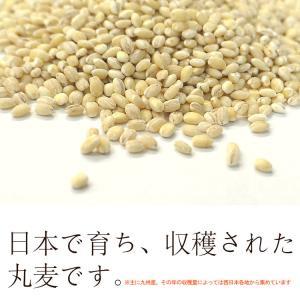 特選丸麦 1kg〔チャック付〕/国産|kowakeya|03