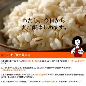 特選丸麦 1kg〔チャック付〕/国産|kowakeya|04
