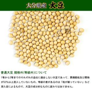 大分県産 大豆 《中粒》 1kg 〔チャック付〕 / 29年産|kowakeya|02