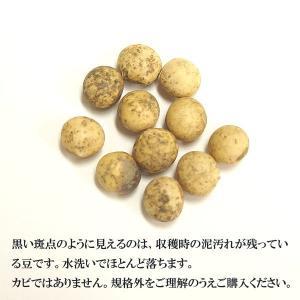 大分県産 大豆 《中粒》 1kg 〔チャック付〕 / 29年産|kowakeya|03