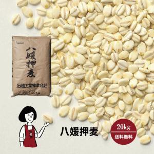 八媛押麦 20kg/国産