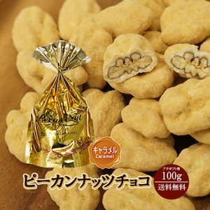 プチギフト ピーカンナッツチョコ キャラメル 100g