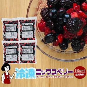 送料無料 冷凍ミックスベリー 4種 500g×4袋 計2kg クール便|kowakeya