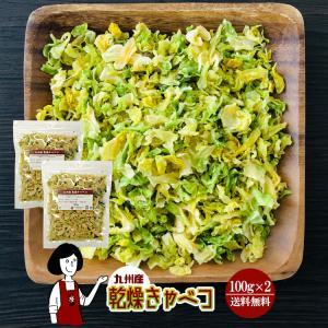 九州産 乾燥キャベツ 100g×2 チャック付 kowakeya