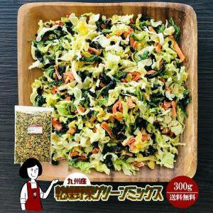乾燥野菜グリーンミックス 300g チャック付 kowakeya