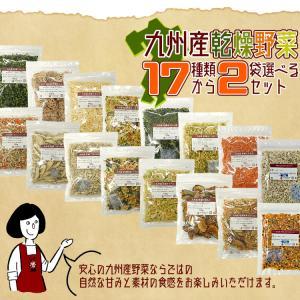 九州産乾燥野菜14種類から2袋選べるセット/オマケ付|kowakeya|02
