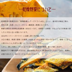 九州産乾燥野菜14種類から2袋選べるセット/オマケ付|kowakeya|04