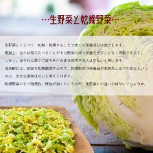九州産乾燥野菜14種類から2袋選べるセット/オマケ付|kowakeya|05
