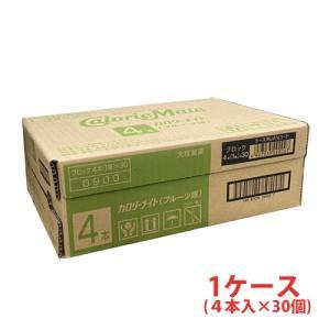 カロリーメイトブロック フルーツ味 1箱4本入×30個