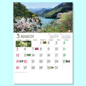 YG50 四季彩花300冊 墨1色名入れ・袋付   名入れ・壁掛けカレンダー・販促・ノベルティ・格安・年末のご挨拶に・企業PR、イメージUPに