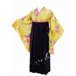 二尺袖 着物 袴 セット フリーサイズ 袴はMサイズ紐下91cm haki-18 koyuki