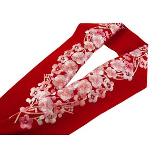 振袖用 シルエリー 金刺繍入り 半衿 赤地 si-70|koyuki