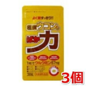 極撰ウコンのばか力 36粒×3 中央薬品|kozukata-m