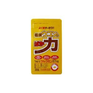 メール便送料無料 極撰ウコンのばか力 36粒 中央薬品|kozukata-m
