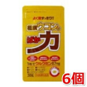 極撰ウコンのばか力 36粒 6個セット 中央薬品|kozukata-m