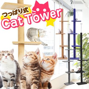 キャットタワー 突っ張り / シンプル キャットポール 木登り ネコタワー 高230〜260cm シ...