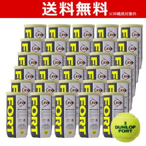 DUNLOP ダンロップ 「FORT フォート [2個入]1箱 30缶/60球 」テニスボール|kpi24