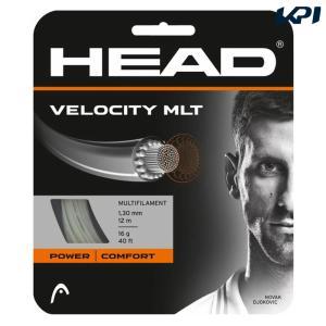 HEAD ヘッド 「Velocity MLT ベロシティ マルチ  281404」硬式テニスストリング ガット|kpi24