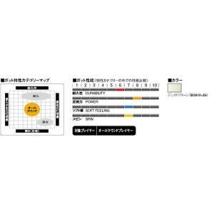 『即日出荷』 『■24張セット』GOSEN(ゴーセン)「バイオガットバイオアーメット JG bs810」バドミントンストリング|kpi24|02