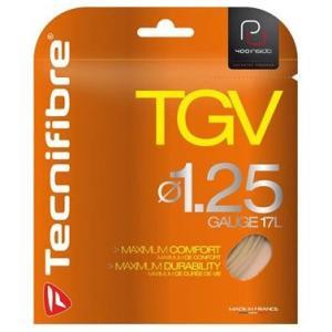 「旧パッケージ」Tecnifibre テクニファイバー 「PREMIUMRange ティージーブイ TGV 」テニスストリング ガット 『即日出荷』 kpi24