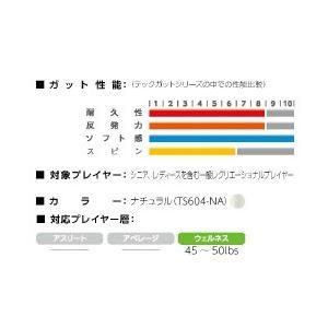 「新パッケージ」GOSEN(ゴーセン)「テックガットプロ16」ts604硬式テニスストリング(ガット) kpi24 03