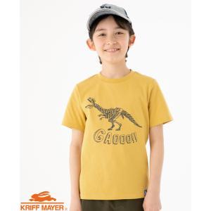 半袖Tシャツ 120cm〜170cm ダイナソー 恐竜 白亜TEE T-REX キッズ ジュニア テ...