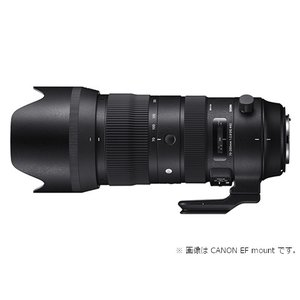 SIGMA 交換用レンズ ニコンFマウント Sports 70-200mm F2.8 DG HSM (ニコン) ksdenki