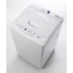 (標準設置無料) 大宇電子ジャパン 洗濯機 DW-S50AW ホワイト 洗濯容量:5.0kg ksdenki