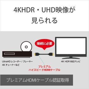 ソニー HDMI端子用接続ケーブル DLC-HX15XF ブラック|ksdenki