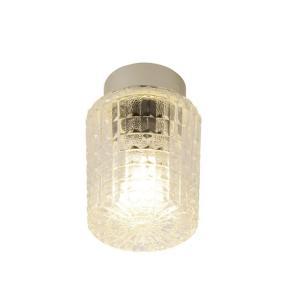 スワン電器 照明器具(浴室灯) SWL-128 電球色相当