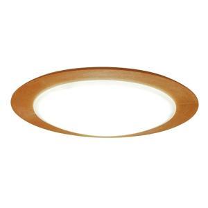 スワン電器 照明器具(小型シーリングライト) CE-50NA