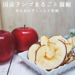りんごチップス 国産 20g メール便 りんご アップル 林檎 ドライフルーツ  ハロウィン 備蓄 保存食|ksfoods|02