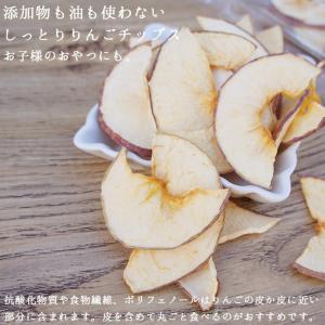 りんごチップス 国産 20g メール便 りんご アップル 林檎 ドライフルーツ  ハロウィン 備蓄 保存食|ksfoods|05