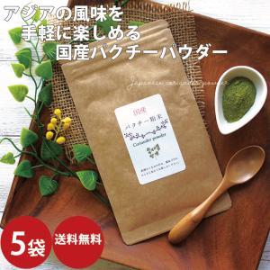 パクチー 乾燥 35g×2袋 メール  香草 調味料 ドライ コリアンダー  ドライハーブ キャッシュレス お歳暮|ksfoods