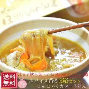 こんにゃく カレーうどん 箱 2食入×3個セット 蒟蒻 ダイエット こんにゃく麺 食品 置き換え フォー ハロウィン コロナ太り 対策|ksfoods