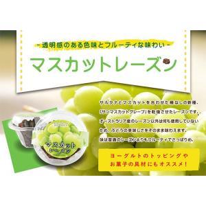 マスカットレーズン 200g×3個 セット  レーズン サルタナ 乾燥果実 ドライフルーツ 種なし  常温 * ハロウィン 備蓄 保存食|ksfoods