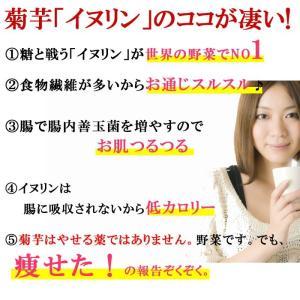 菊芋茶 ティーパッグ20包入×2袋 メール便  国産 健康茶  きくいも ギフト イヌリン お茶 キクイモ ハロウィン|ksfoods|04