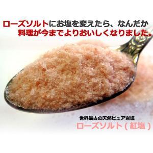 岩塩 食用 紅塩 ローズソルト 300g 調味料 メール便 送料無料 お年賀 冬ギフト|ksfoods