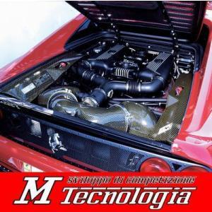 Mテクノロジア F355 エンジンルームフードパネル|ksp-attain