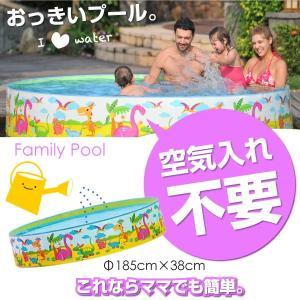 プール 家庭用 大型 180cm 子供 自立型 円形 水遊び...
