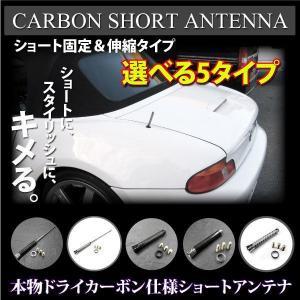 カーボンショートアンテナ タイプ選択 カラー選択 @a299|ksplanning