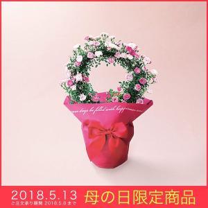 母の日 ギフト つるバラ 鉢植え 真珠貝リング ピンク 花 5号鉢 バラ 薔薇|kss-s